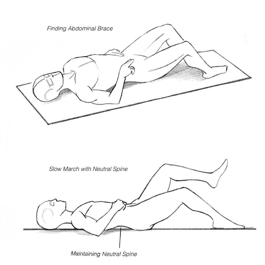 hight resolution of diagram of core bracing exercise to help maintain neutral spine
