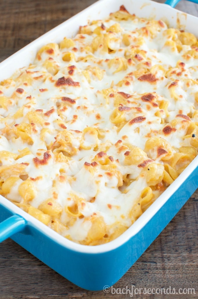 Buffalo Chicken Alfredo Casserole