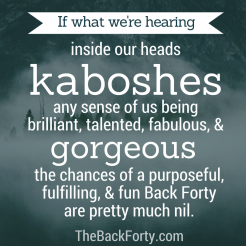 """""""If what we're hearing inside our heads kaboshes any sense of us being brilliant, talented, fabulous, and gorgeous, the chances of a purposeful, fulfilling, and fun Back Forty are pretty much nil."""" - Darrell Gurney, Co-Founder of The Back Forty"""