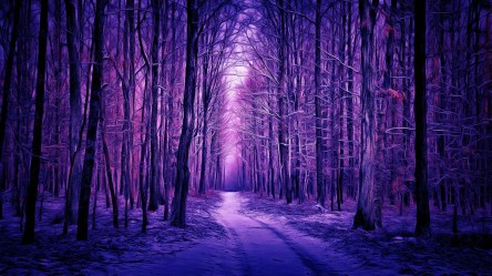 forest winter purple digital painting wallpapers backgrounds hd backiee 1000 wallpaperaccess