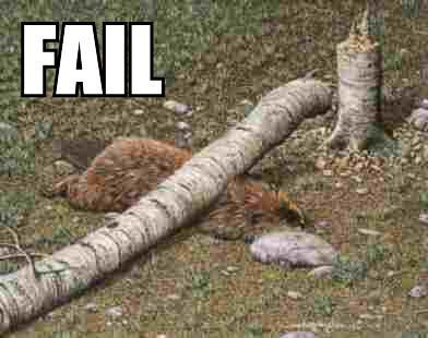 failbeaver