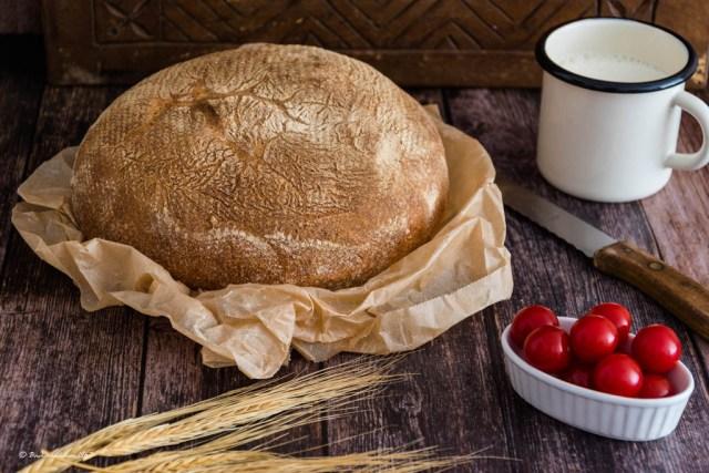 Pane di grano duro