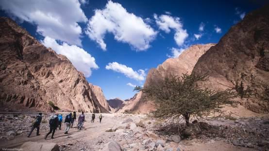 Insights Seekers Hiking Trip