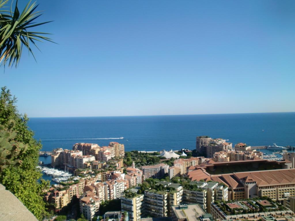 熱帯公園は、モナコを見下ろす高台にある公園。サボテンなどの植物がたくさんありますが、1番の見どころは高台から広がる眺望。