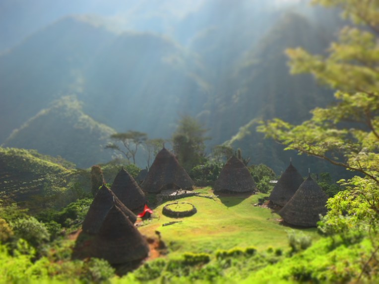 Drumhouses in Flores