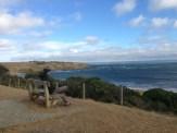 Morning breeze @ Philip Island