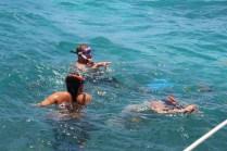 Snorkeling among jellyfish @ Coff's Patch