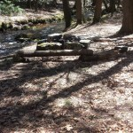 Knowlton Brook Campsite