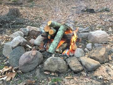 Green Falls Fire