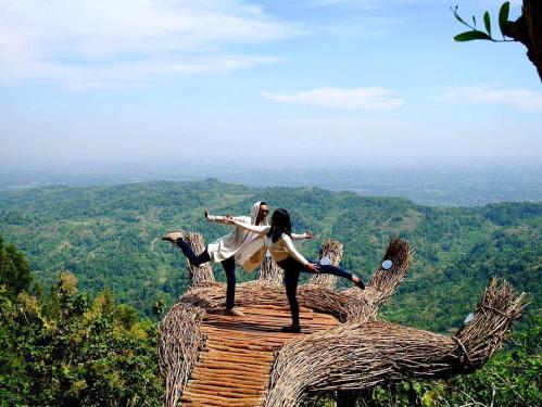 Yogyakarta Travel Guide Pinus Pengger