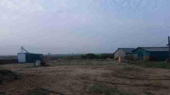 Hadkalim Farm