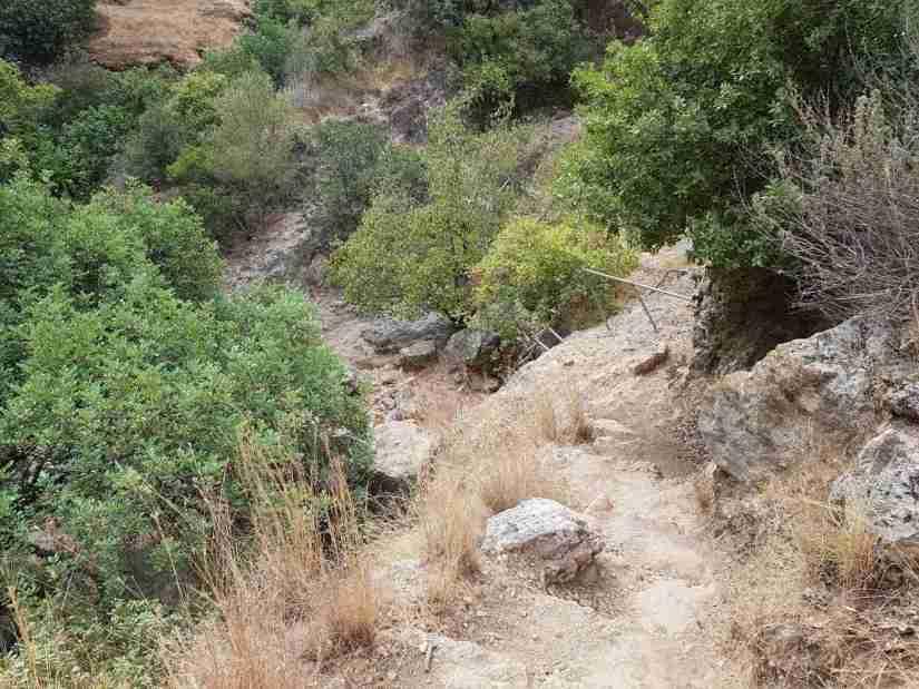 Ladder in Nahal Amud