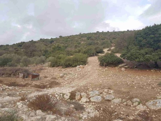 On the Israel National Trail