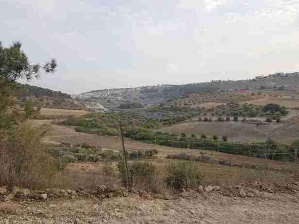 The Israel National Trail along Zippori Stream