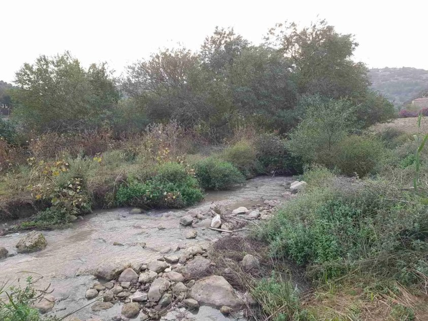 Zippori Stream (Nahal Zippori)