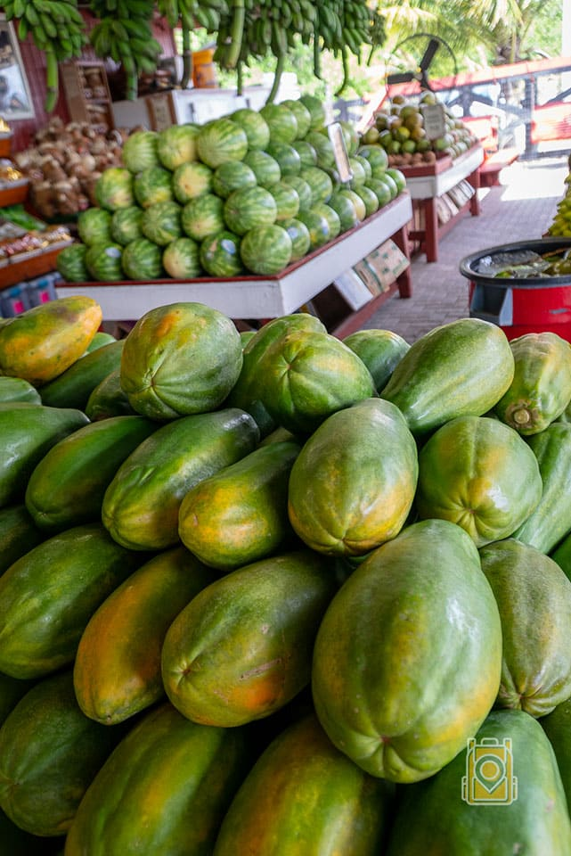 Melons at Robert Is Here fruit stand in south Florida