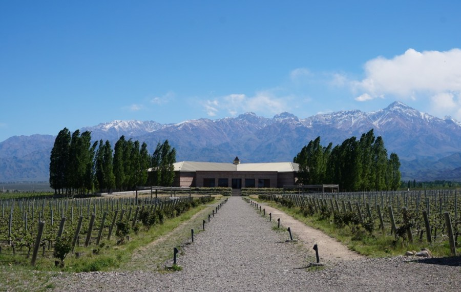 Mendoza - best places in Argentina