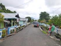 Road to Saria (1)