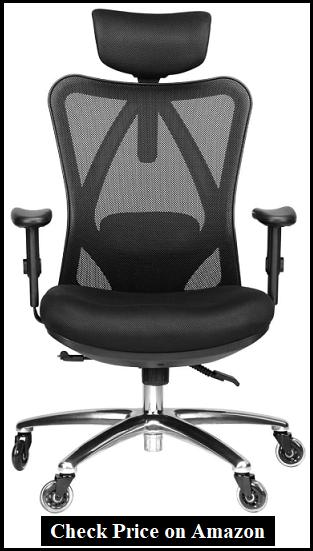 Duramont Ergonomic Office Chair