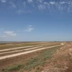 Multiple parallel roads on the Arabat Spit.