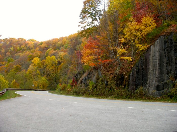 Cherohala Skyway Fall Color