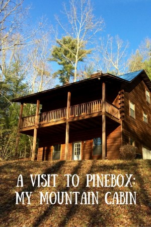 A Visit to Pinebox_ My Mountain Cabin-3