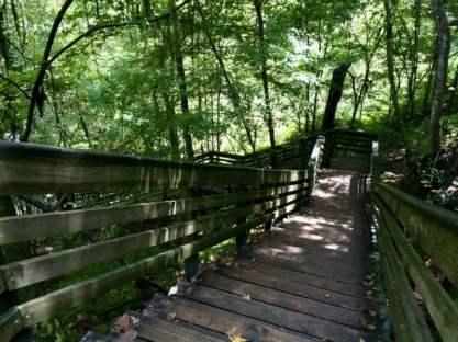 Devil's Millhopper Stairs