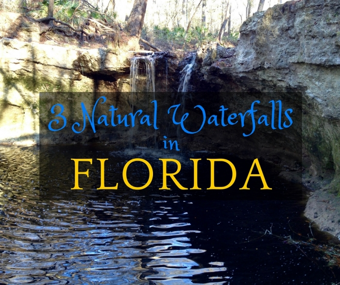 Visit 3 Natural Waterfalls in Florida