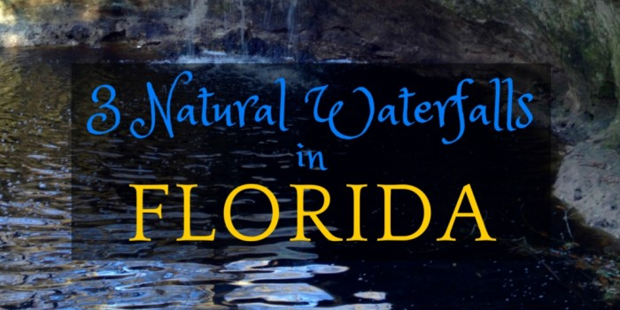 florida e1447206854712 - Visit 3 Natural Waterfalls in Florida