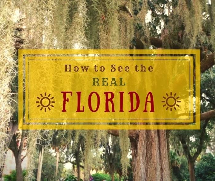 Florida-3