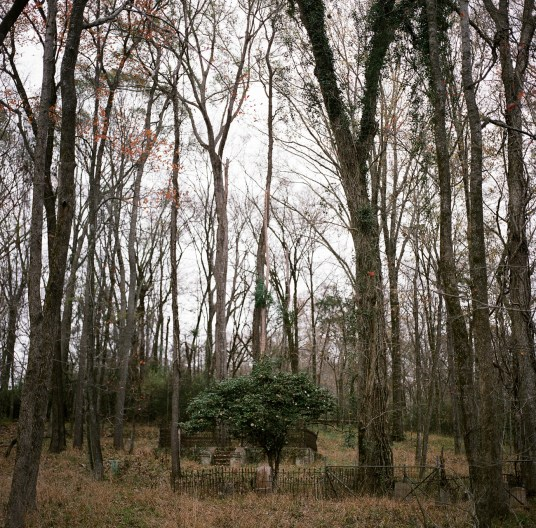 Ashleigh Coleman Rodney Mississippi 22 - The Haunting Town of Rodney, Mississippi: A Photo Essay