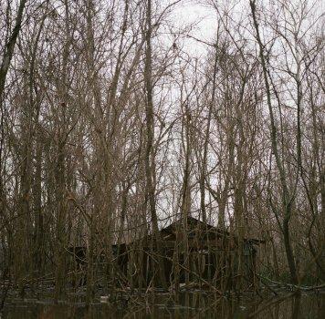 Rodney Mississippi Abandoned House