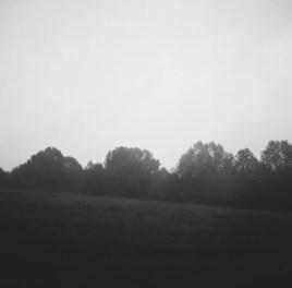 Rodney Mississippi Fog