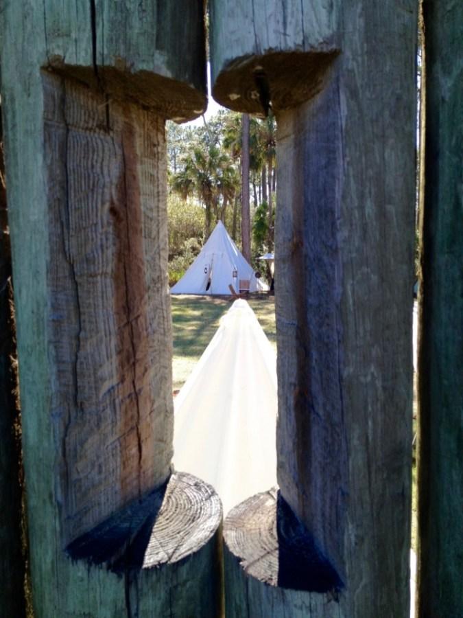 IMG 0277 - 8 Living History & Historical War Reenactments in Florida