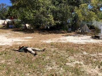 IMG 2268 - 8 Living History & Historical War Reenactments in Florida