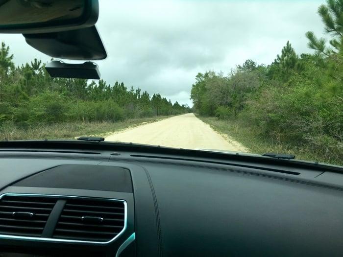 Dirt Road Florida