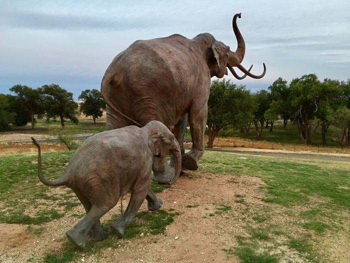 Lubbock Lake National Historic Landmark Lubbock Texas Mammoth
