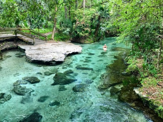 Kelly Park Rock Springs Run Apopka Florida