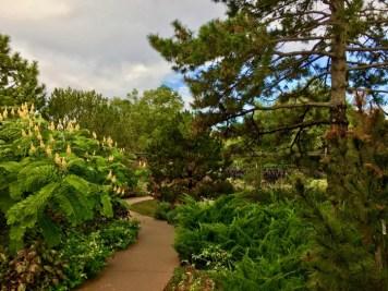 trail through garden