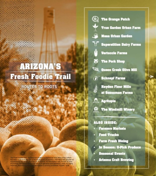 Mesa Arizona Fresh Foodie Trail publication