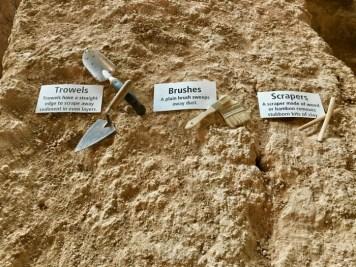 paleontologist's tools