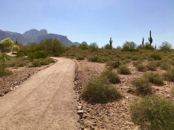 Superstition Mountain Museum trail
