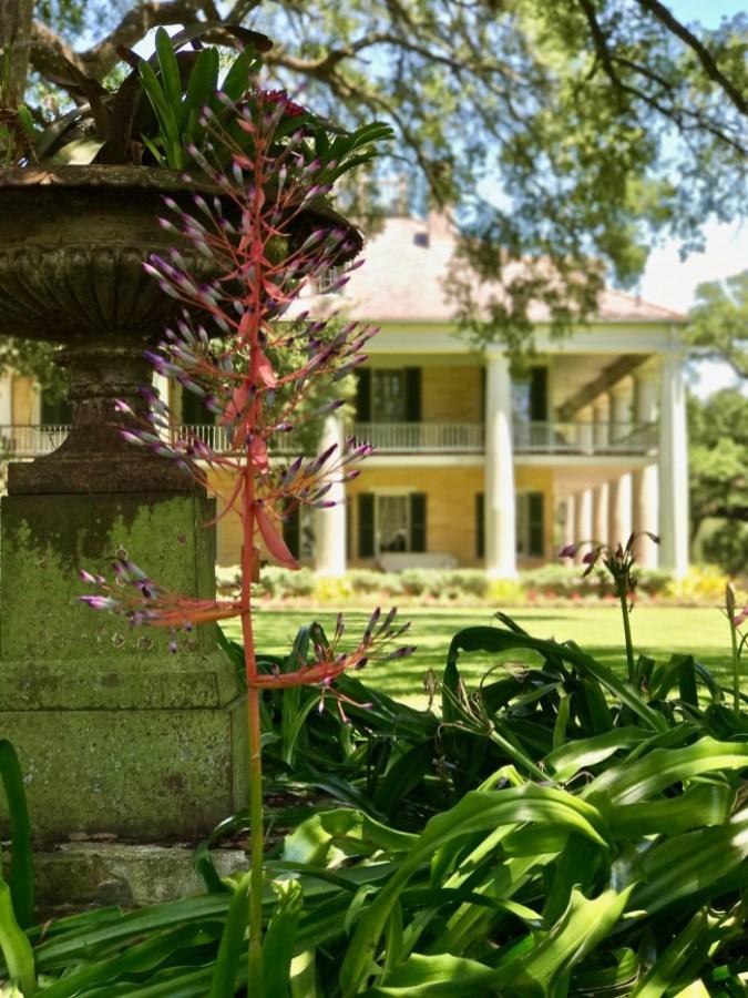 IMG 5309 - Explore Ascension Parish, Louisiana