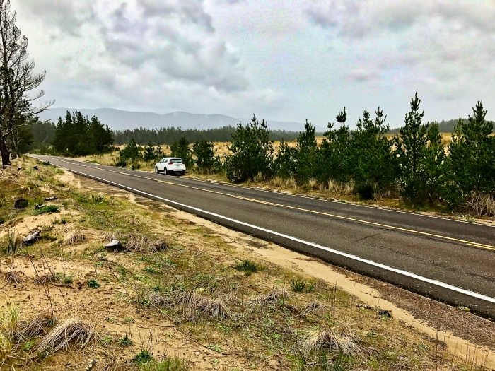 IMG 3486 - Tillamook: A Drive Along the North Oregon Pacific Coast