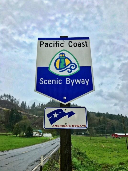IMG 3500 - Tillamook: A Drive Along the North Oregon Pacific Coast