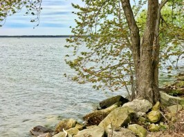 IMG E4152 - Presque Isle State Park & Other Things to Do in Erie, Pennsylvania