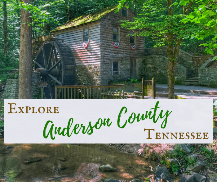 Anderson County 3 - The Clinton 12 Story: Tennessee's Green McAdoo Cultural Center