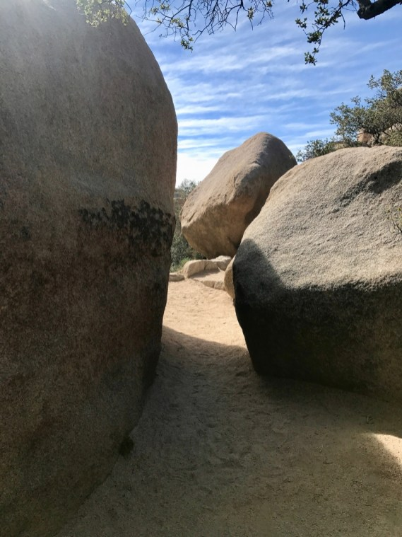 IMG 2430 - Best Hikes in Joshua Tree National Park on a One-Day Trip