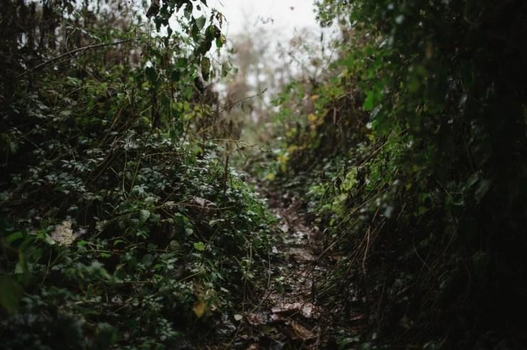 MississippiDeltaEmmettTill BackroadPlanet AshleighColeman 80 - Searching for Emmett Till: A Mississippi Delta Pilgrimage