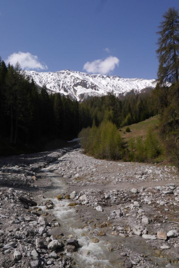 river-valley-bernina